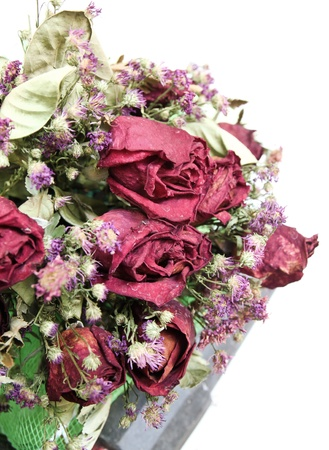 bouquet of dried roses on white background photo