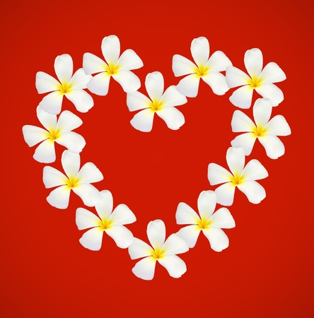 frangipani shape as heart isolated on red background photo