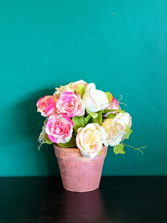 rose in flowerpot for decoration  photo