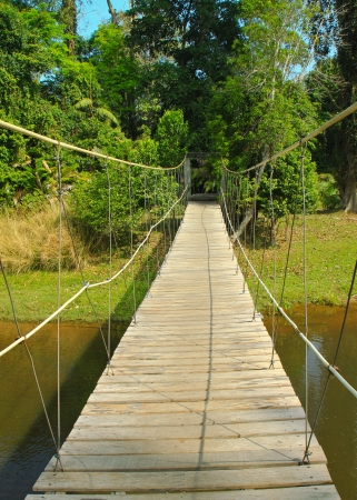 Bridge to the jungle,Khao Yai national park in Thailand Stock Photo - 14048346
