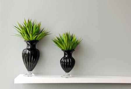 Pianta verde in vaso nero decorato per camera Archivio Fotografico - 14483162
