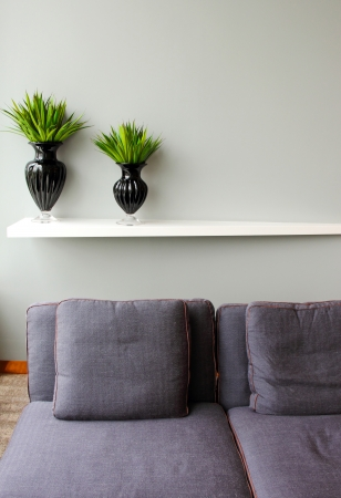 Green plant in black vase with comfortable sofa