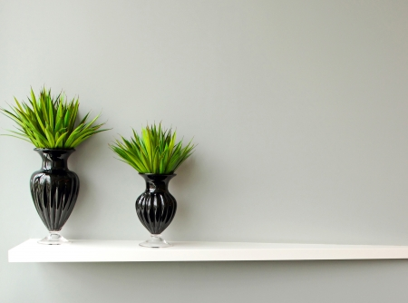 indoor plants: Green plant in black vase decorated for room Stock Photo