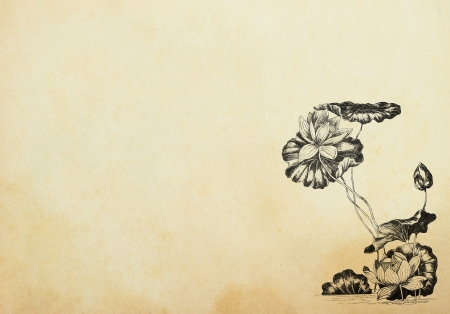 오래 된 종이에 아르누보 스타일의 연꽃