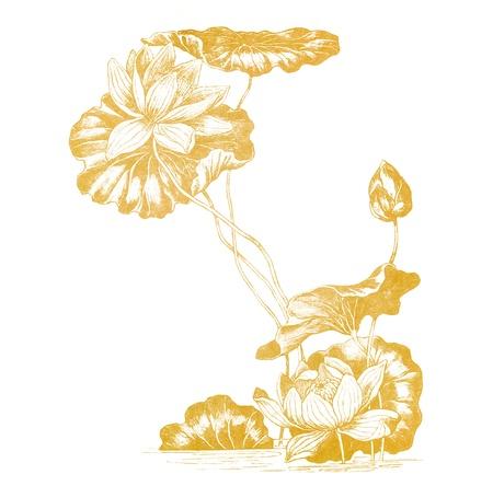 고립 된 오래 된 종이에서 아르누보 스타일의 연꽃