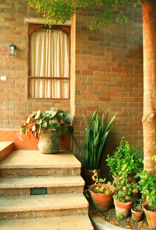 Front of the italian house style with plant photo