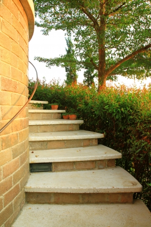 Staircase with flower and tree in garden photo