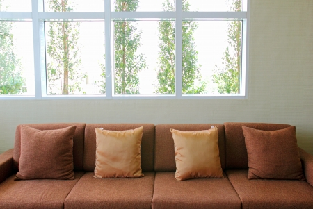 coziness: sofa in the living room with green plant outside the windows