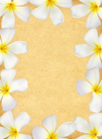 Frangipani flower frame on old grunge paper  photo