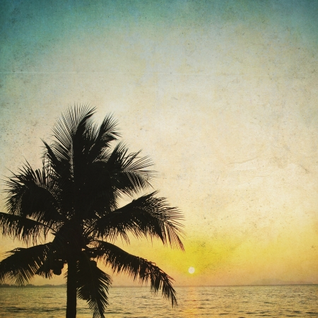 Coconut palm tree silhouetted and sunrise in vintage background photo