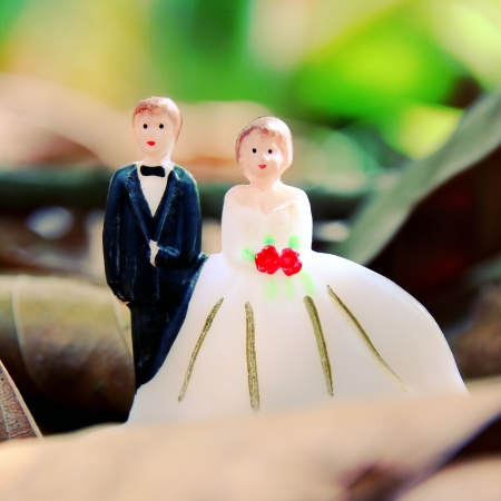 wedding couple doll on leaves ground with retro filter effect photo