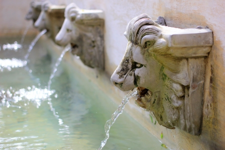 Water flow from lion statue on wall  photo