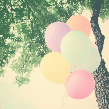 show garden: Colorful festive balloons on tree with retro filter effect