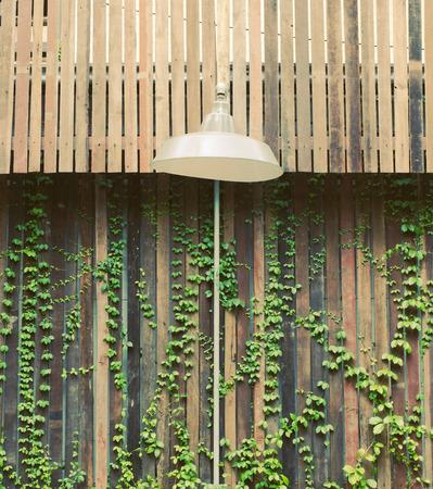muebles de madera: Antigua lámpara al aire libre colgando con pared de madera y planta de hiedra