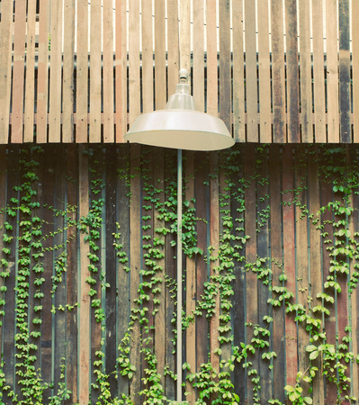 wooden furniture: Old lamp hanging outdoor with wooden wall and ivy plant
