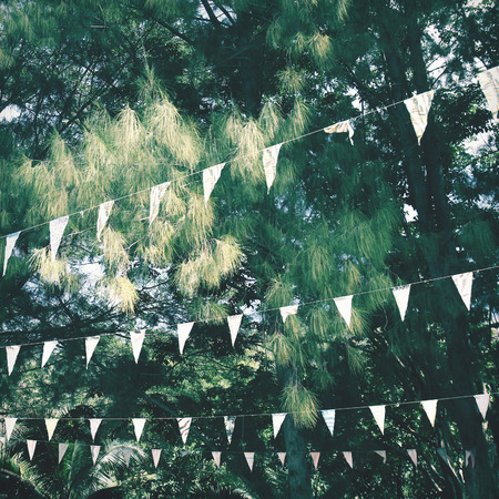 Colorful bunting flags hanging on tree with retro filter effect Zdjęcie Seryjne