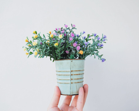 hand holding flower: Hand holding flower plant pot for decorated on white background Stock Photo
