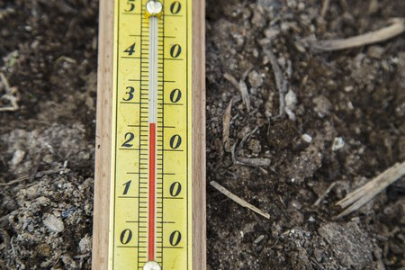termometer: Outdoor Thermometer on the ground in the garden