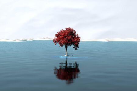 lone tree on a large lake