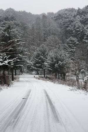 heavy snow: heavy snow