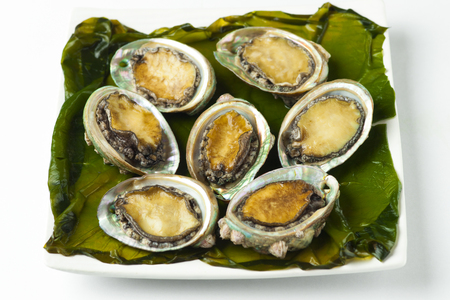 Fresh and delicious seafood, abalone (ear shell)