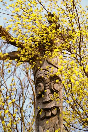 Asan Oeam-ri, a beautiful and beautiful spring landscape of a folk village