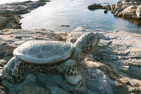Busan, Sea, Rock, Stone Turtle, Korea Reklamní fotografie
