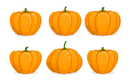 Cartoon pumpkin set. Different shapes and sizes orange gourd isolated on white background. Vegetable icons. Element for autumn Halloween party invitation decoration. Vector flat illustration.