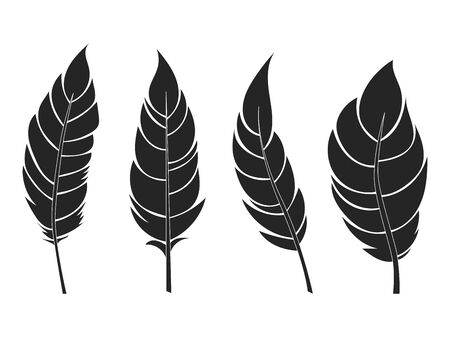Decorative black flat feathers set. Icons isolated on a light background.Tribal objects. Vector illustration.