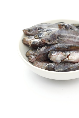 treated: Dried fish on a white background