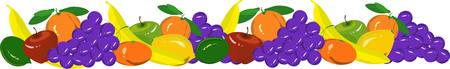 mandarins: Hand drawn fruits garland with grape, mandarins, oranges, apples, bananas, limes, lemons on white, vector illustration
