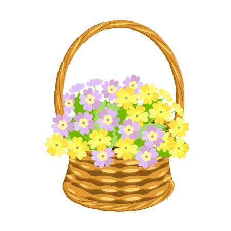 Primarose bouquet in basket wicker with a vine. Pink and yellow flowers art design elements object isolated stock vector illustration for web, for print Illusztráció