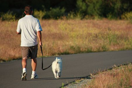 drool: Man walking his dog Stock Photo
