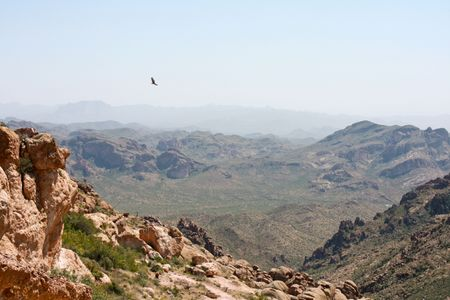 Hawk soaring above mountainous desert landscape photo