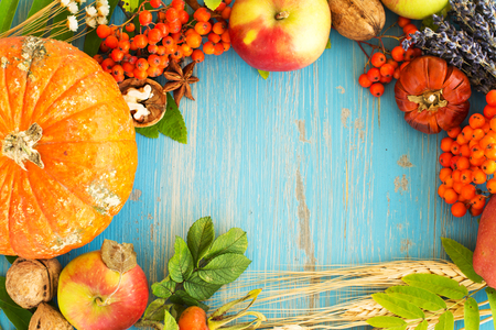 fall harvest: Rich fall harvest frame - nuts, flowers, berries and apples. Space for text