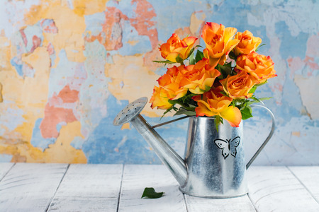 Roses in a zink watering pot. Space for text. Happy mothers day concept or greeting card