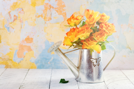 Roses in a zink watering can. Space for text. Happy mothers day concept or greeting card Stock Photo