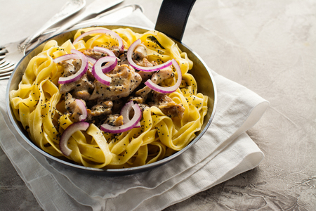 Tagliatelle pasta with chicken, cream sauce and poppy seeds. Space for text Stock Photo