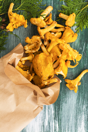 girolle: Heap of raw chanterelles over wooden background. Top view, space for text