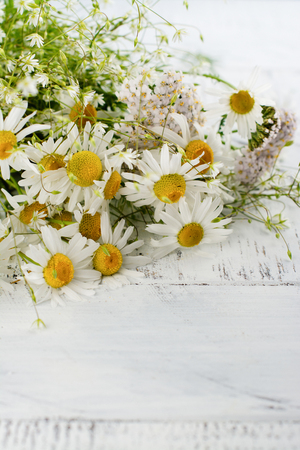 Daisy chamomile flowers on wooden garden table. Meadow herbs in bunch. Copy space