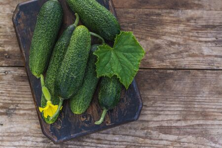 Fresh organic cucumbers Stock fotó