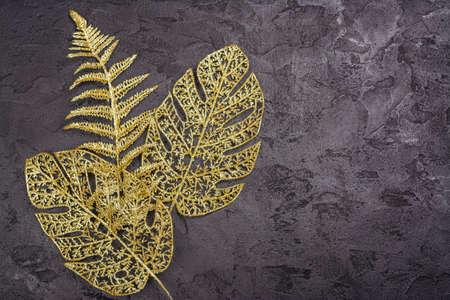 Golden leaves on black Archivio Fotografico