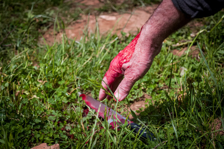 The crime scene, murder, investigation, bloody knife on the grass, in the course of an investigation Stock Photo