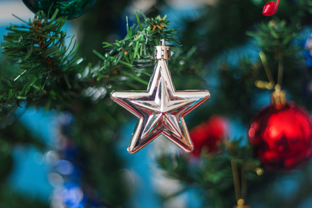 Christmas white star decoration on a green pine tree with red ball