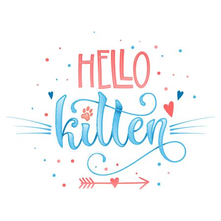 Hello  kitten quote. Blue color baby shower hand drawn calligraphy style lettering phrase. Boho elements, whiskers decor. Boy, girl card, poster, print, stiker, shirt design. Vettoriali