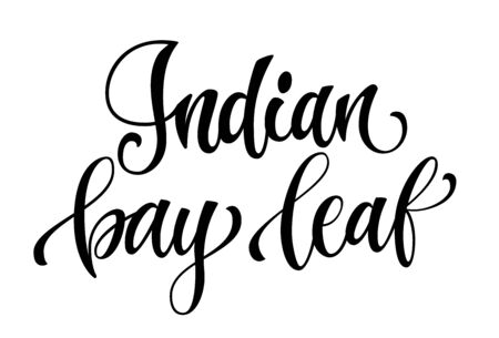 Vector hand drawn calligraphy style lettering word - indian bay leaf. Isolated script spice text label. Labels, stikers, packages design element.