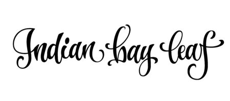 Indian bay leaf - hand drawn spice text. Isolated calligraphy scrypt stile words. Labels, stikers, packages design. Vector lettering design element. Illusztráció
