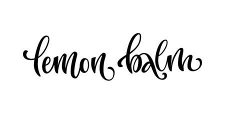 Vector hand drawn calligraphy style lettering word - Lemon balm. Labels, shop design, cafe decore etc Isolated script spice text logo. Vector lettering design element.