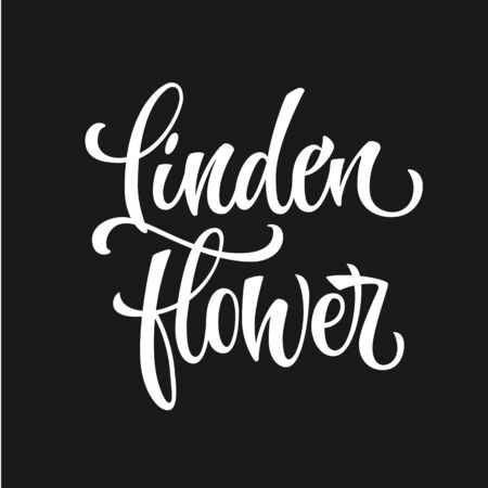White colored hand drawn spice label - Linden flower. Isolated calligraphy scrypt stile word. Vector lettering design element.