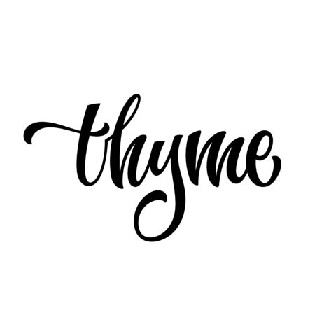 White colored hand drawn spice label - Thyme. Isolated calligraphy scrypt stile word. Vector lettering design element.